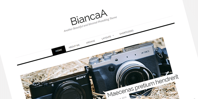 BiancaA – photography WordPress theme