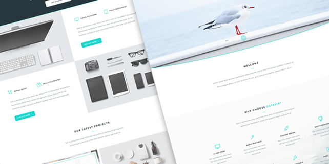 octavia-clean-psd-template