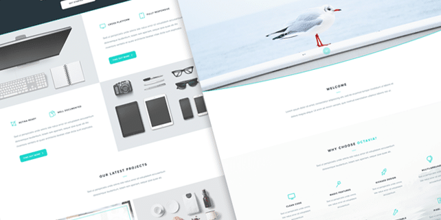Octavia – clean, fresh PSD template