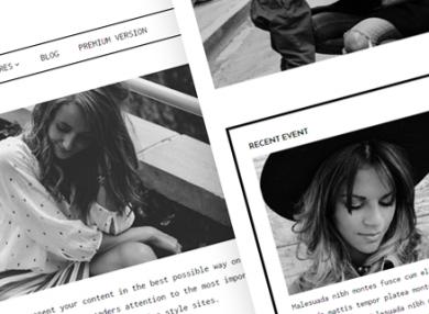 didi-simple-fashion-wordpress-theme