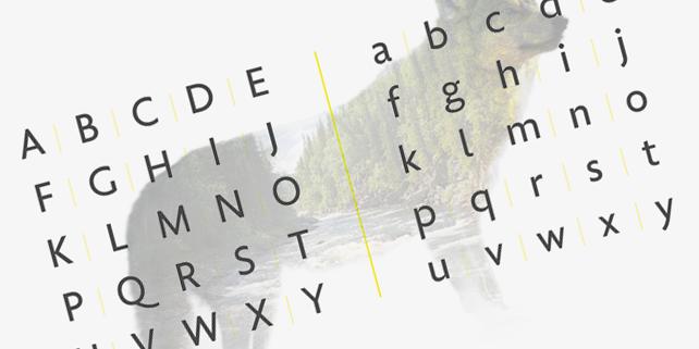golden-sans-modern-high-quality-font