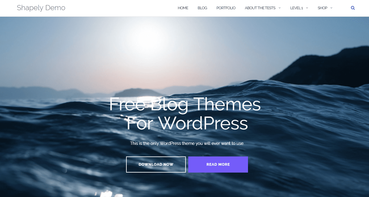 Best 15 Free Responsive Blog Themes For WordPress
