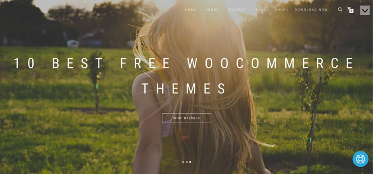 10 Best Free WooCommerce Themes 2017