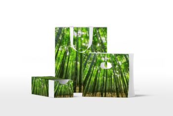 Green Bags and Box Free Mockup Set