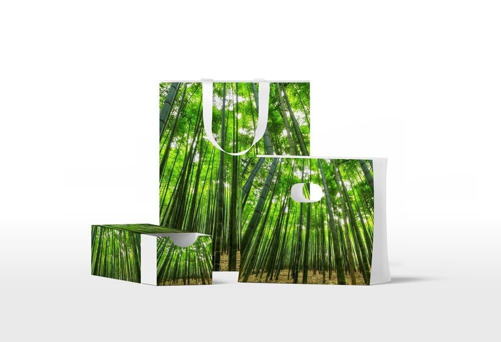 Green Bags and Box Free Mockup Set