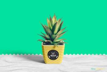 Free Customizable Plant Pot Mockup in PSD