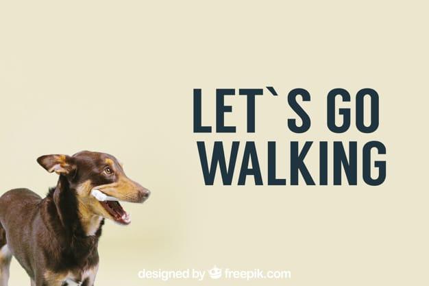 Dog Walking Mockup