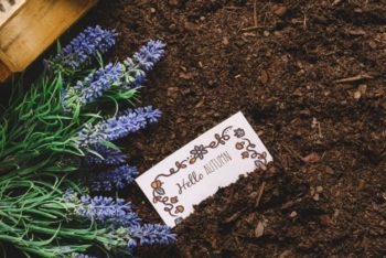 Free Gardening Plus Card Mockup in PSD