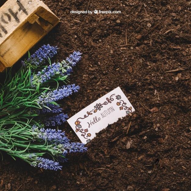 Gardening Plus Card