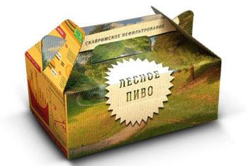 Free Cardboard Lunchbox Package Mockup