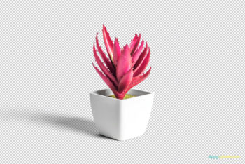 Free Small Plant Pot Design Mockup in PSD