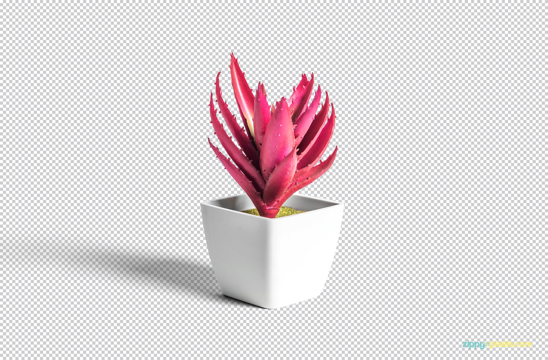 Small Plant Pot Design