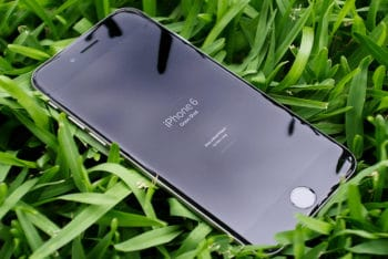 Free iPhone Plus Grass Background Mockup in PSD