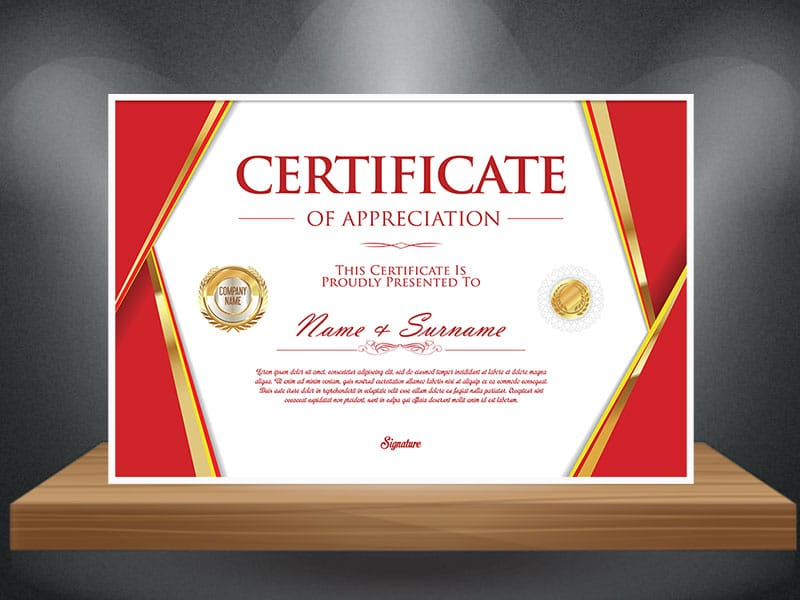 High Quality Certificate