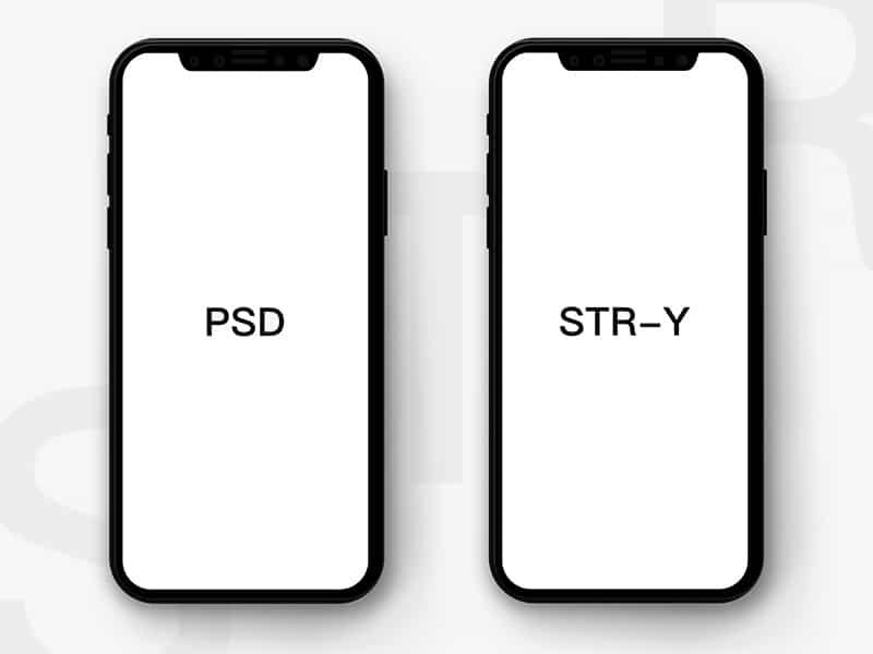 Flat Customizable iPhone X