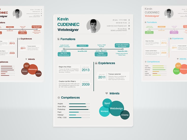 Modern Infographic Style Resume