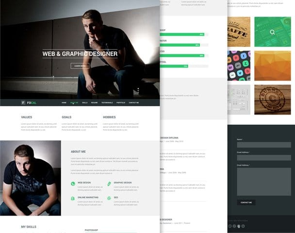 Focal Resume Design Theme