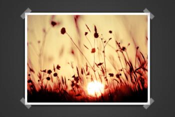Free Image Presentation Scene Mockup in PSD