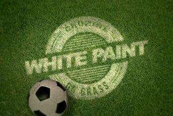 Free Sporty Grass Logo Design Mockup in PSD
