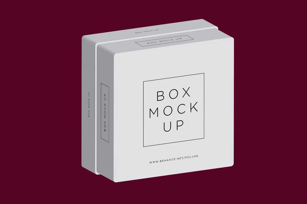 square box moxkup