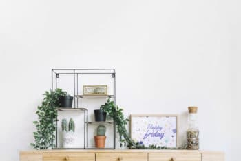 Free Plants Plus Frames Decoration Mockup in PSD