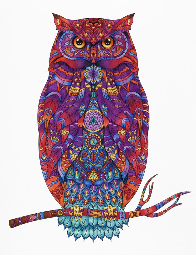 Adult Coloring Book Animal Drawing