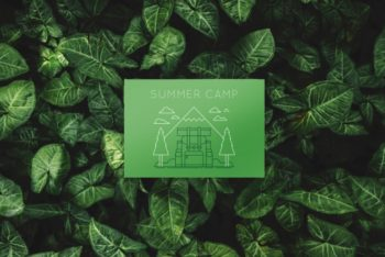 Free Green Paper Card Plus Leaves Mockup in PSD