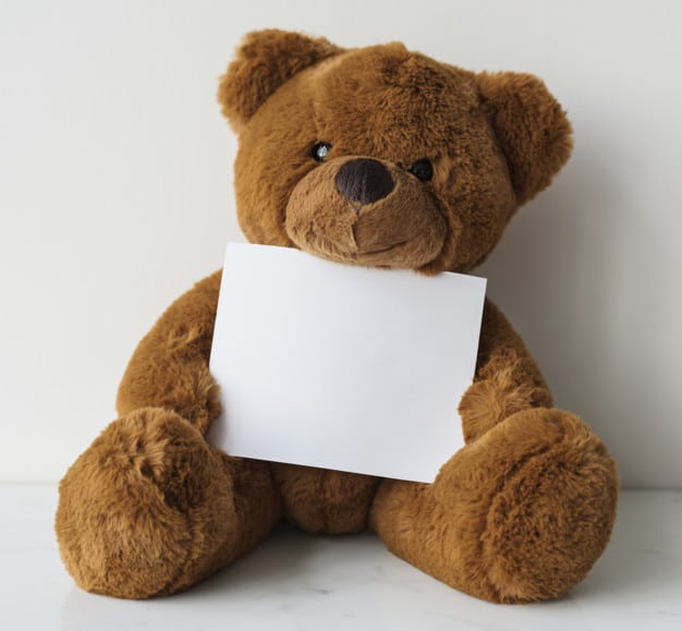 Teddy Bear Plus Blank Paper