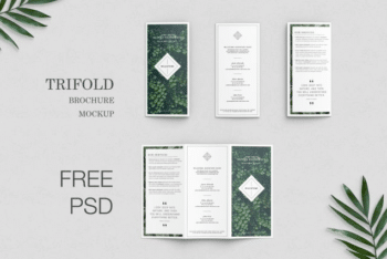Free Trifold Brochure PSD Mockup Available with Useful Features