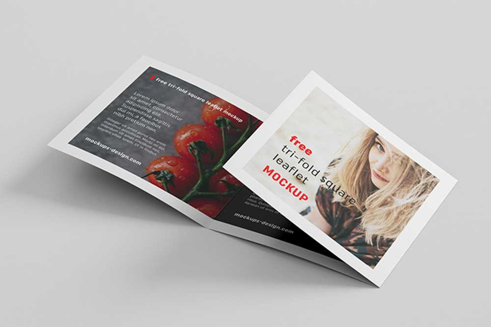 trifold brochure mockups