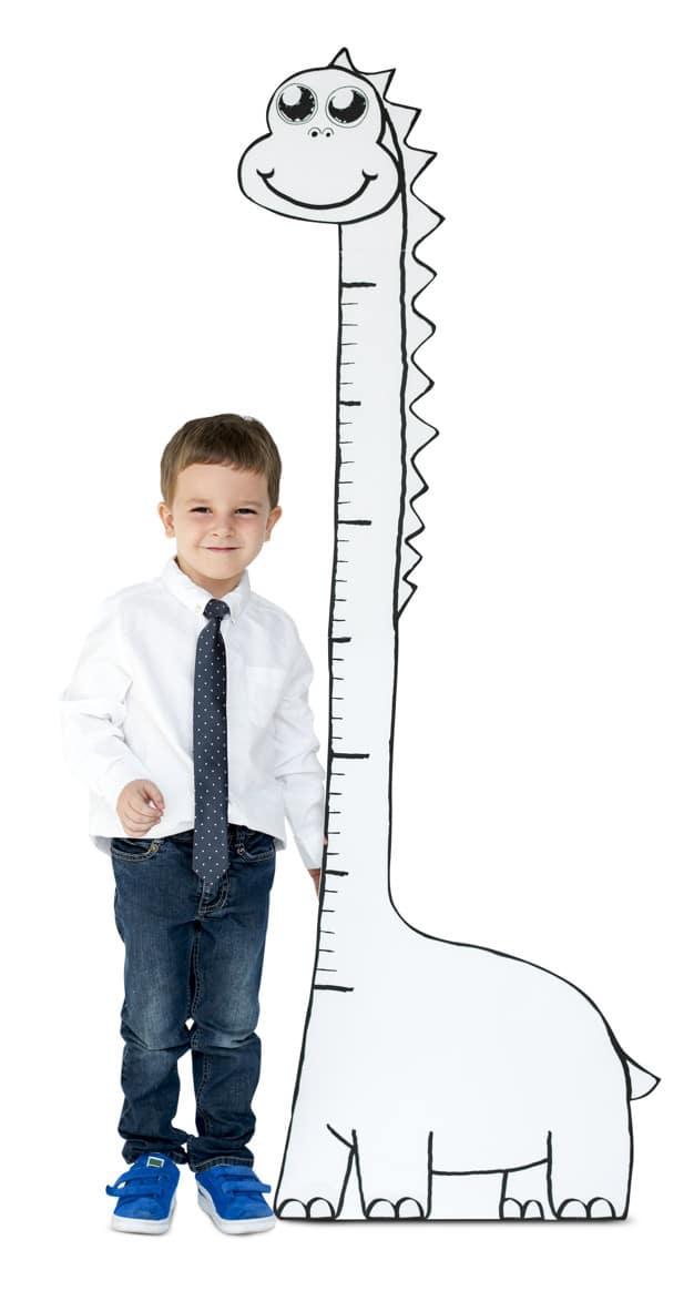 Boy Plus Growth Scale