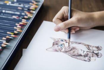 Free Adorable Kitten Illustration Mockup in PSD