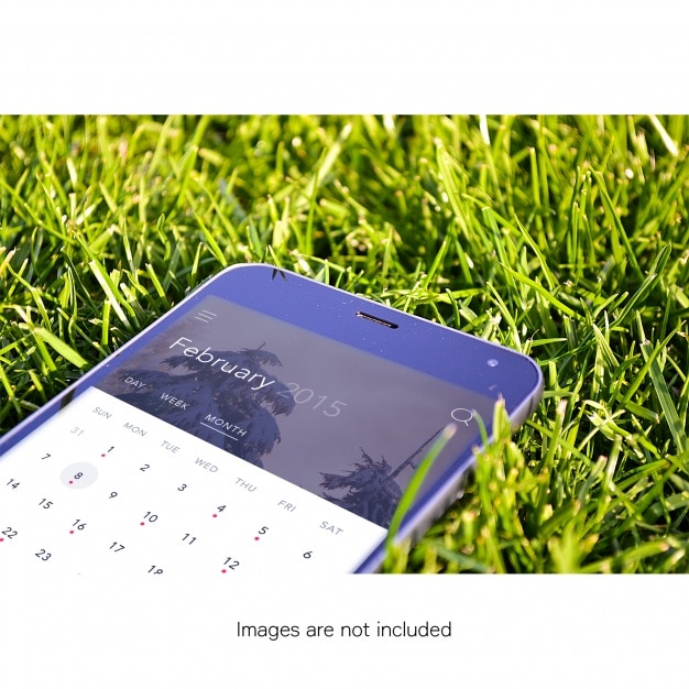 Smartphone Plus Grass