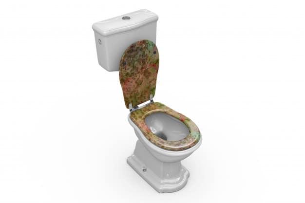 Fancy Toilet Bowl