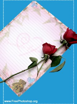 Love Letter Plus Rose