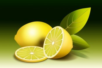 Free Fresh Lemon Illustration Mockup in PSD