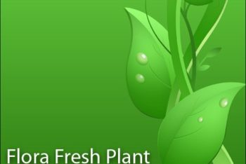 Free Fresh Plant Vector Design Mockup in PSD