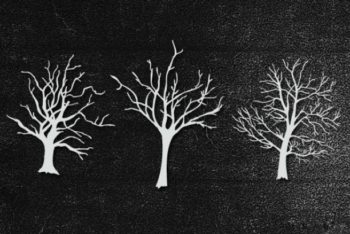 Free Hand Drawn Tree Silhouette Mockup in PSD