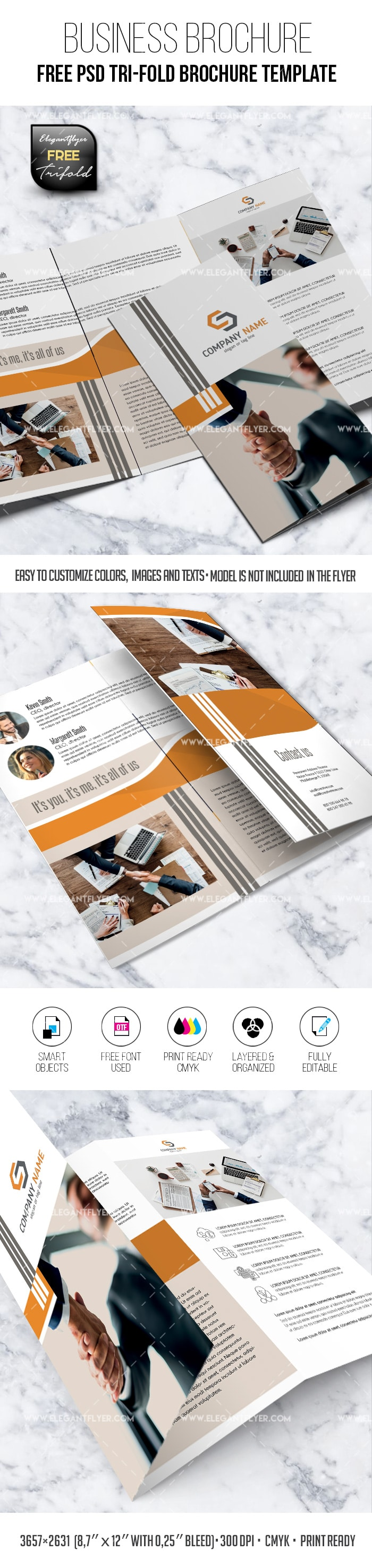 Free A4 tri-fold business brochure in PSD mockup