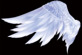 Free Angelic Wings Template Mockup in PSD