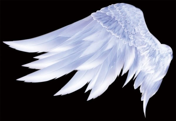Angelic Wings Template
