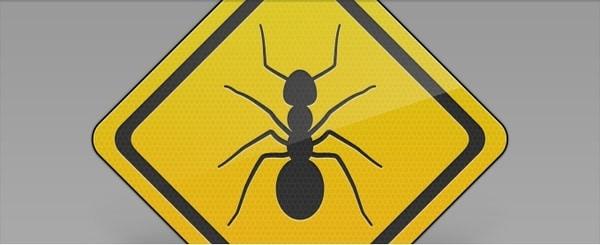 Bug Pest Sign Concept