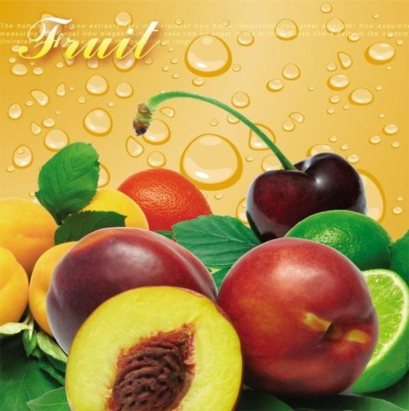 Layered Fruit Bundle