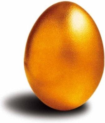 Precious Golden Egg