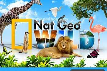 Free Nat Geo Wild Concept Mockup in PSD