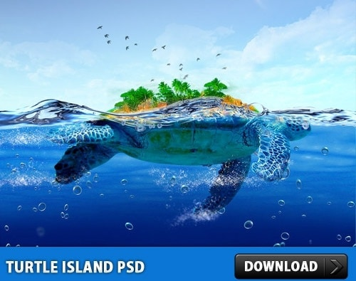 Awesome Turtle Island Concept