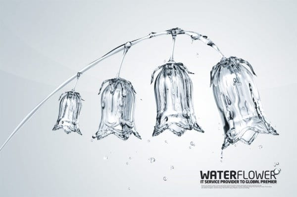Creative Water Plant Art