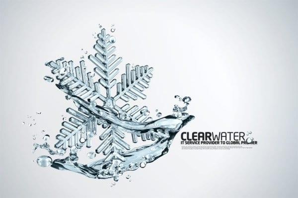 Clear Beautiful Snowflake