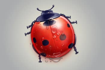 Free Realistic Ladybug Illustration Mockup in PSD