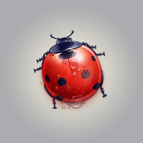 Realistic Ladybug Illustration